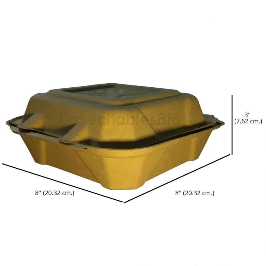 Desechables Bio México | Contenedor Almeja 8''x8'' liso Biodegradable 2